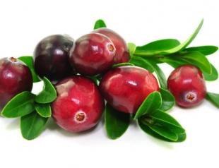 Сезон клюквы: топ 5 рецептов с ягодой