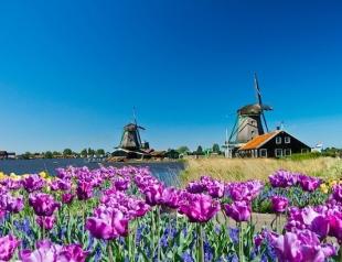 ХОЧУ перемен! История харьковчанки, которая живет в Нидерландах