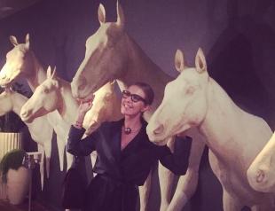 На коне: Ксения Собчак иронично позирует рядом с лошадьми