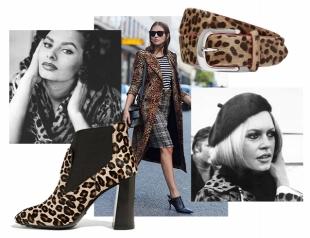 Почему леопардовый принт — больше не признак безвкусицы: как носить одежду с леопардовым принтом