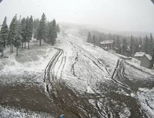 Как Буковель засыпало первым снегом: веб-камеры города смотреть онлайн