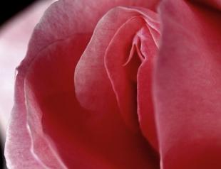 Шантаж интимными кадрами: что делать, если вы попались на крючок