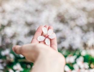 Чистая кожа: пять средств, которые помогут быстро убрать воспаление на лице