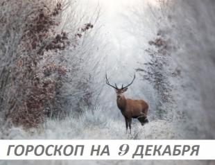 Гороскоп на 9 декабря: причины внутри нас самих, снаружи только оправдания