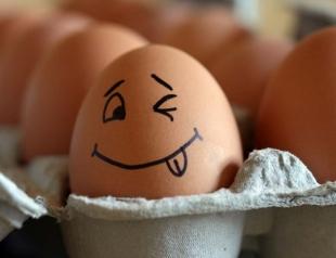Побившее рекорд куриное яйцо оказалось рекламой интернет-магазина (ФОТО)