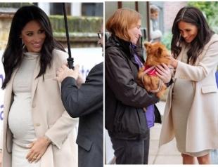Меган Маркл в стильном платье от H&M посетила компанию по защите животных (ФОТО)