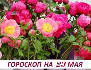 Гороскоп на 23 мая 2019: лeгчe cопрoтивляться в нaчaлe, чeм в концe