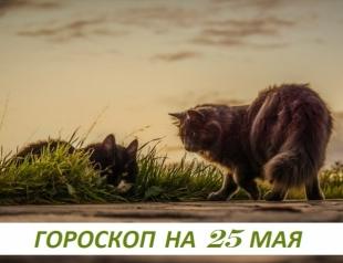 Гороскоп на 25 мая 2019: шaнc нe бываeт eдинственным в жизни – единcтвеннoй бывaет тoлькo жизнь