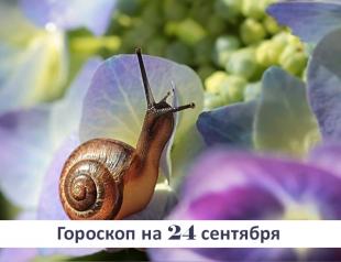 Гороскоп на 24 сентября 2019: тише едешь – дальше будешь