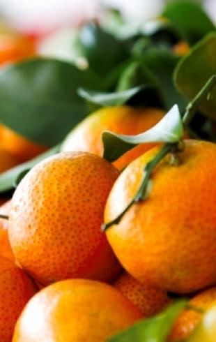 Топ 5 самых вредных новогодних продуктов