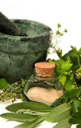 Лекарственные травы: правила сбора и применение