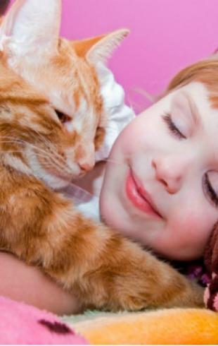 Животные и дети в доме: плюсы и минусы