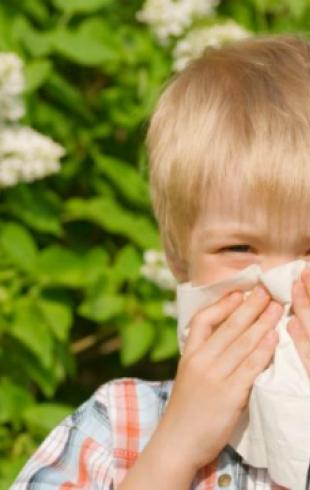 Мегаполисы превращают детей в аллергиков