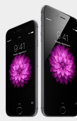 Для iPhone 6 Plus будут делать одежду с карманами побольше