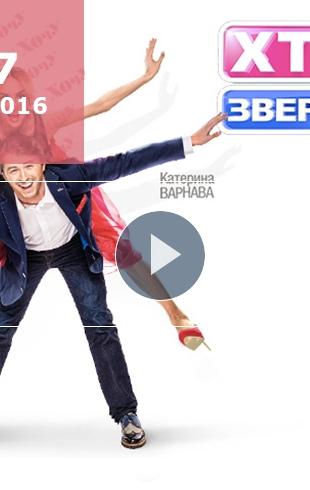 """""""Хто зверху"""" 5 сезон: 7 выпуск от 12.10.2016 смотреть онлайн ВИДЕО"""