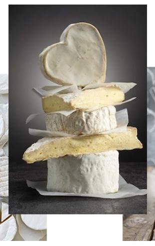 Как правильно есть мягкий сыр и как правильно сервировать сырную тарелку