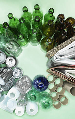 Как правильно сортировать мусор: вышел чат-бот в помощь