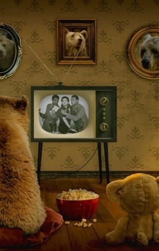 Премьеры на СТБ: какие сериалы смотреть этой осенью?