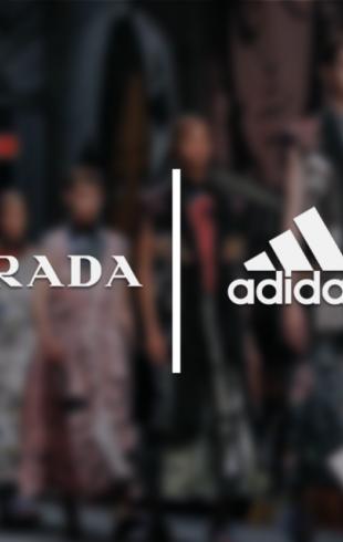 Крупная коллаборация: Prada и Adidas выпустят совместную коллекцию обуви