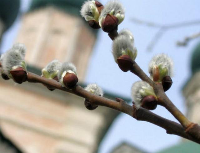 Лазарева суббота и Вербное воскресенье: традиции празднования
