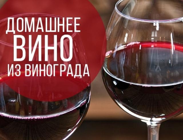 Вино из крыжовника в домашних условиях рецепт и технология 98