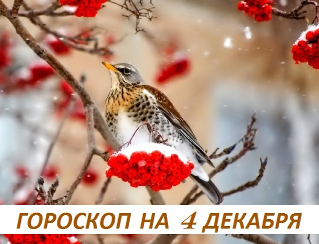 Гороскоп на 4 декабря: когда сомневаетесь, говорите правду