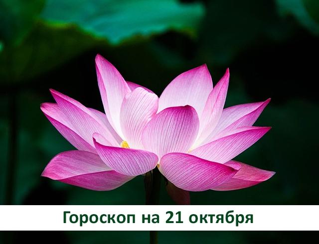 Гороскоп на 21 октября 2019: прощение не меняет прошлого, но освобождает будущее