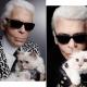 10 фактов о кошке Карла Лагерфельда
