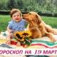 Гороскоп на 19 марта 2019: счастливее всех тот, кто зависит только от себя