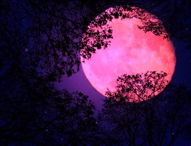 Розовое суперлуние 8 апреля: что нельзя делать