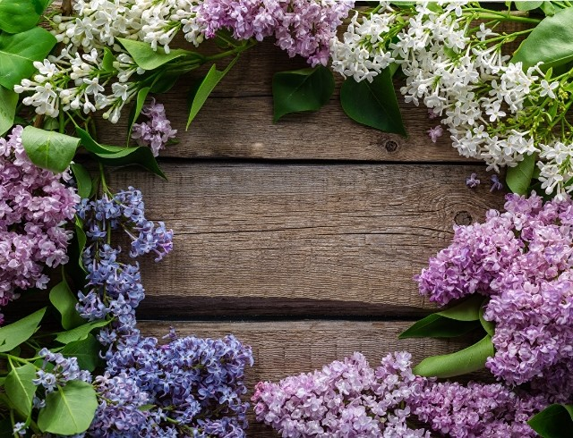 10 мая: какой сегодня праздник, приметы, именинники дня и что нельзя делать