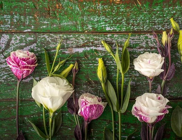 19 апреля: какой сегодня праздник, приметы, именинники дня и что нельзя делать