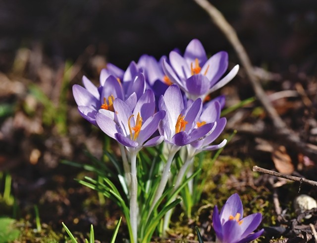 4 марта: какой сегодня праздник, приметы, именинники дня и что нельзя делать